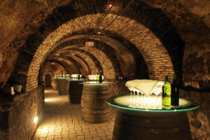 Exclusive Wine Tours